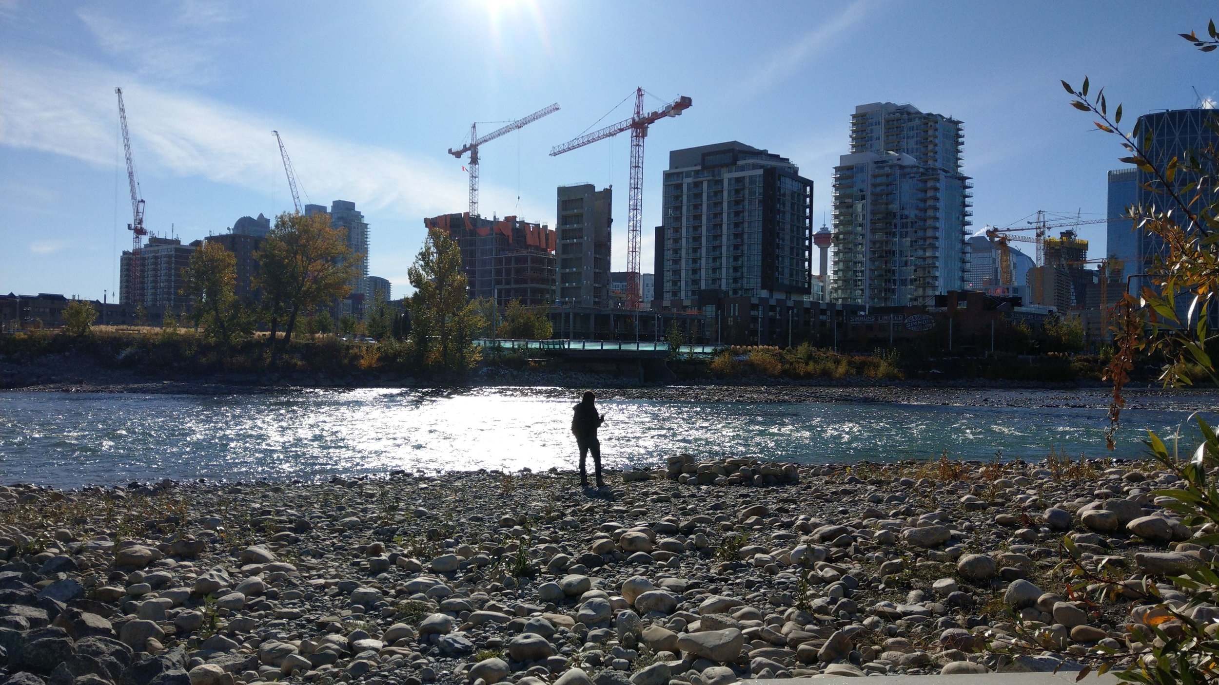 On the shore of St. Patrick's Island, overlooking development in Calgary's East Village