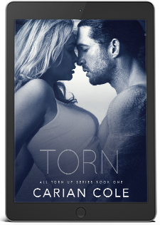 Torn-ebook-for-landing-page-3d copy 2.png