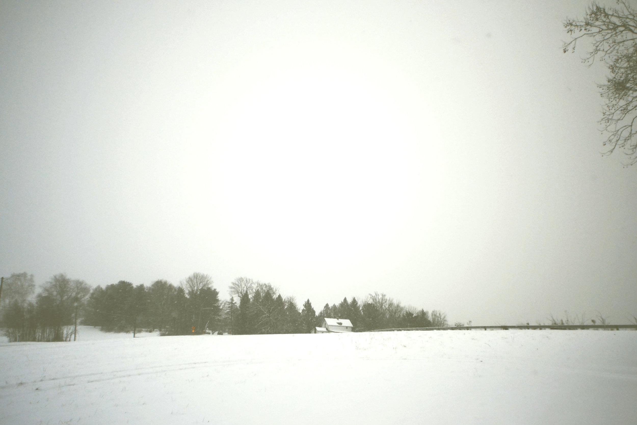 Winter_7.jpg