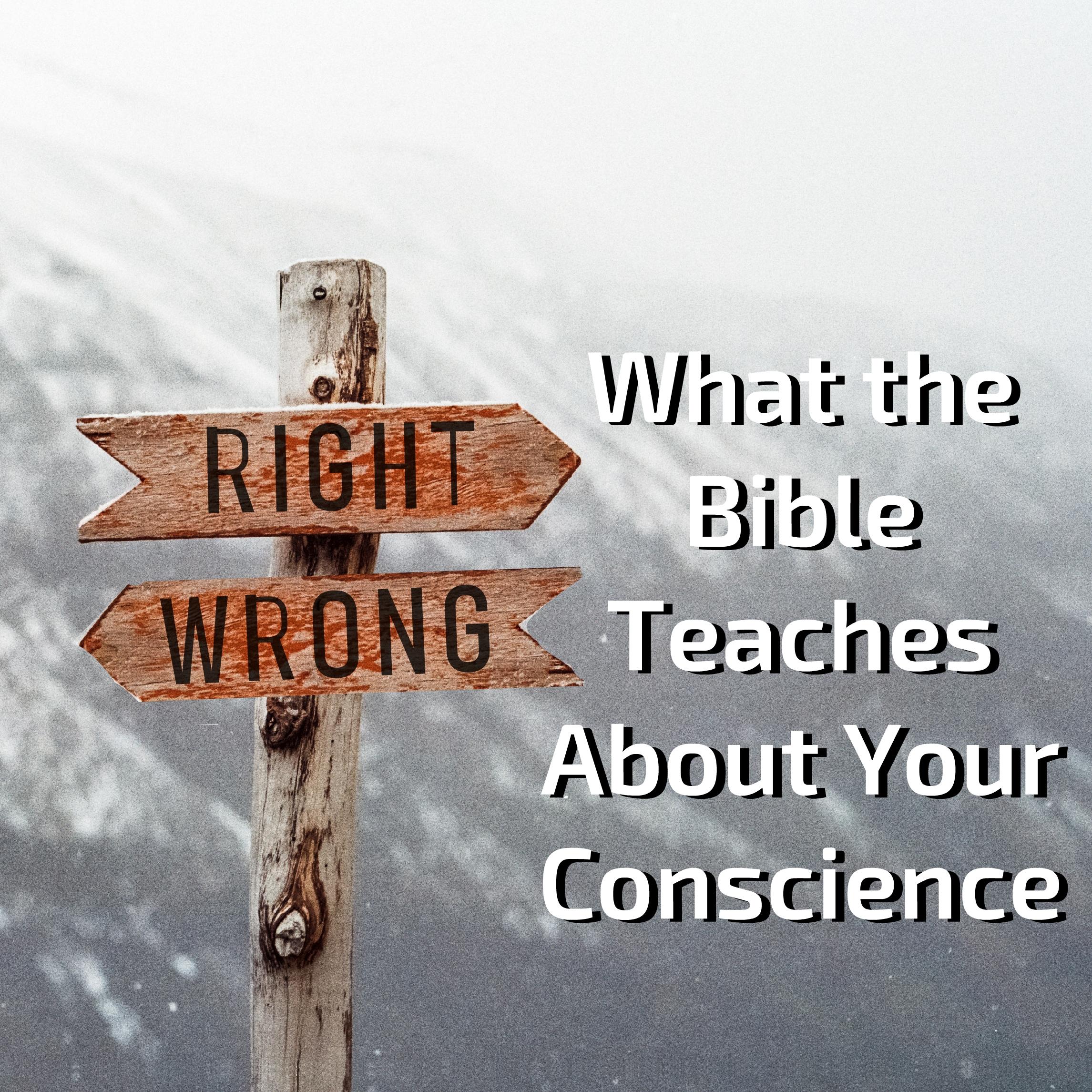 conscience1.jpg
