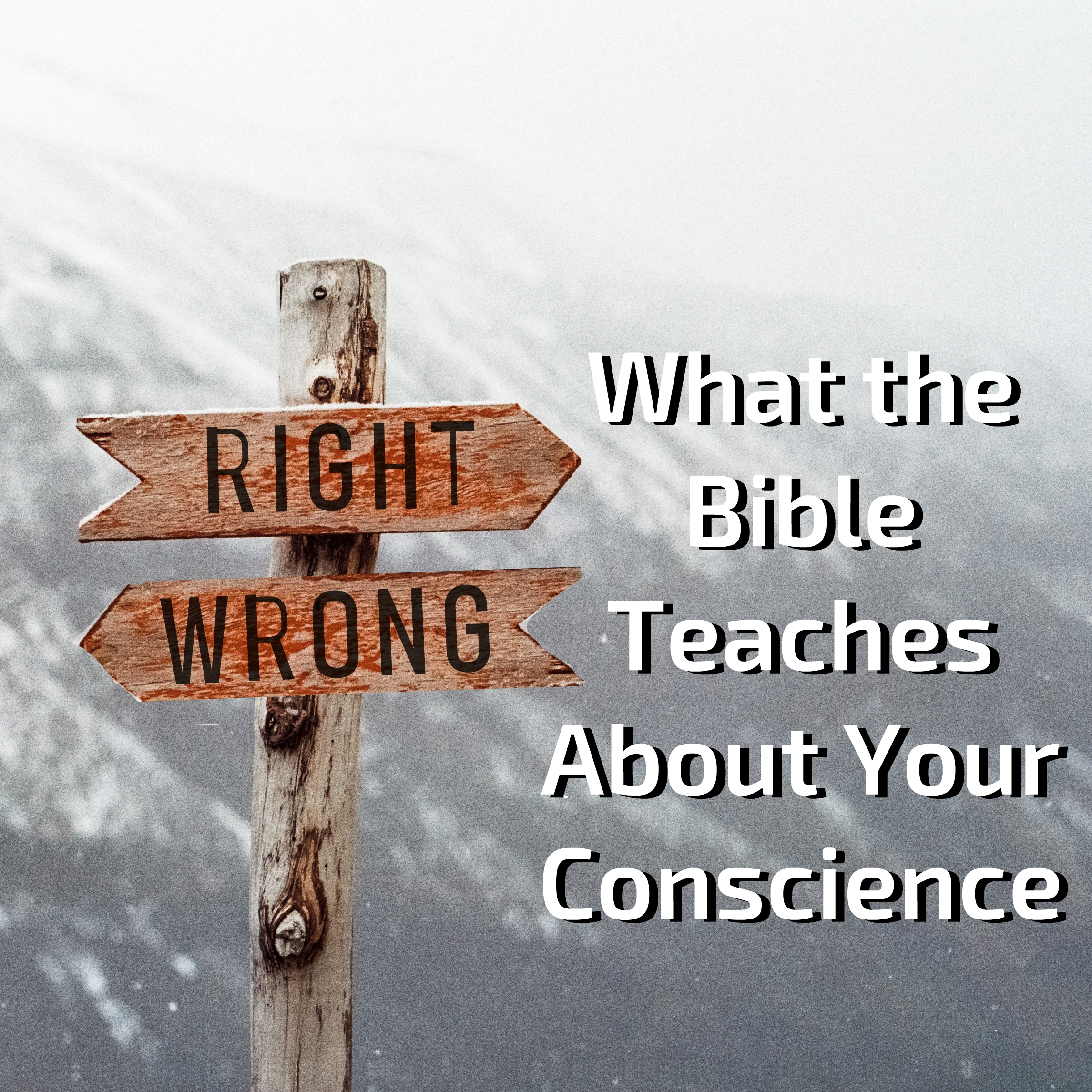 Right and Wrong: What the Bible Teaches About Your Conscience
