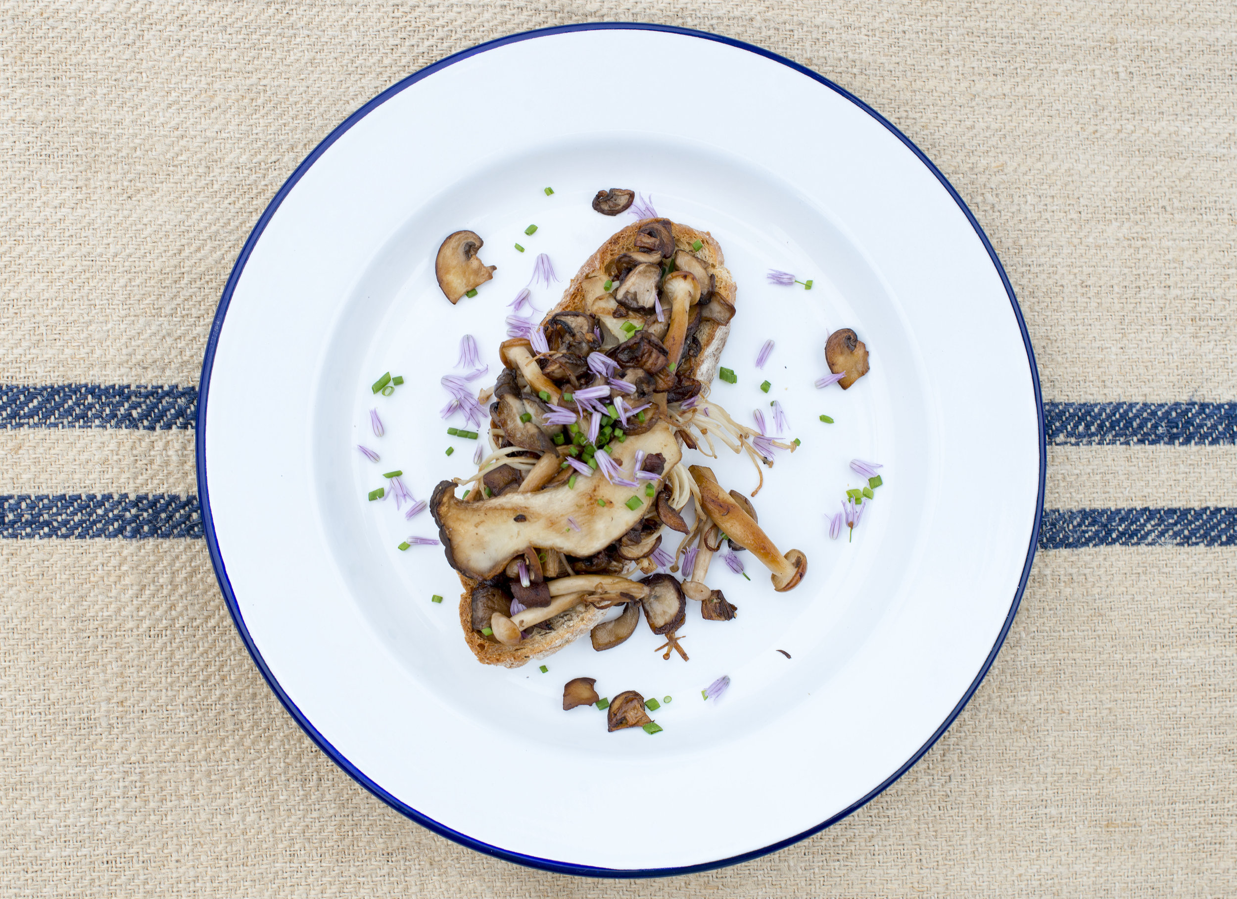 Mushrooms on Toast Lunch