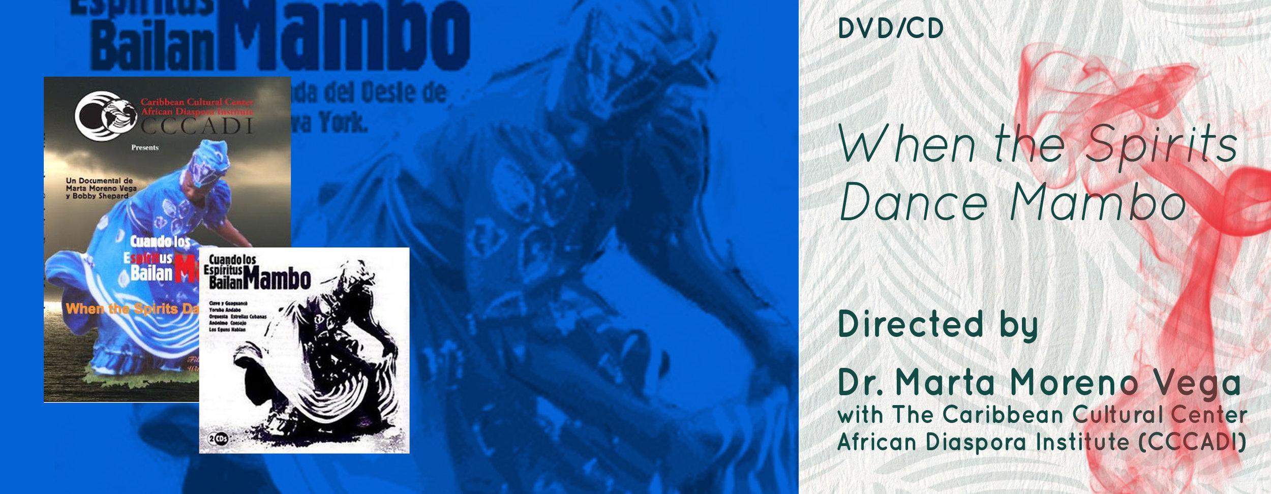DVD_CD_Spirit-Tour-banner.jpg