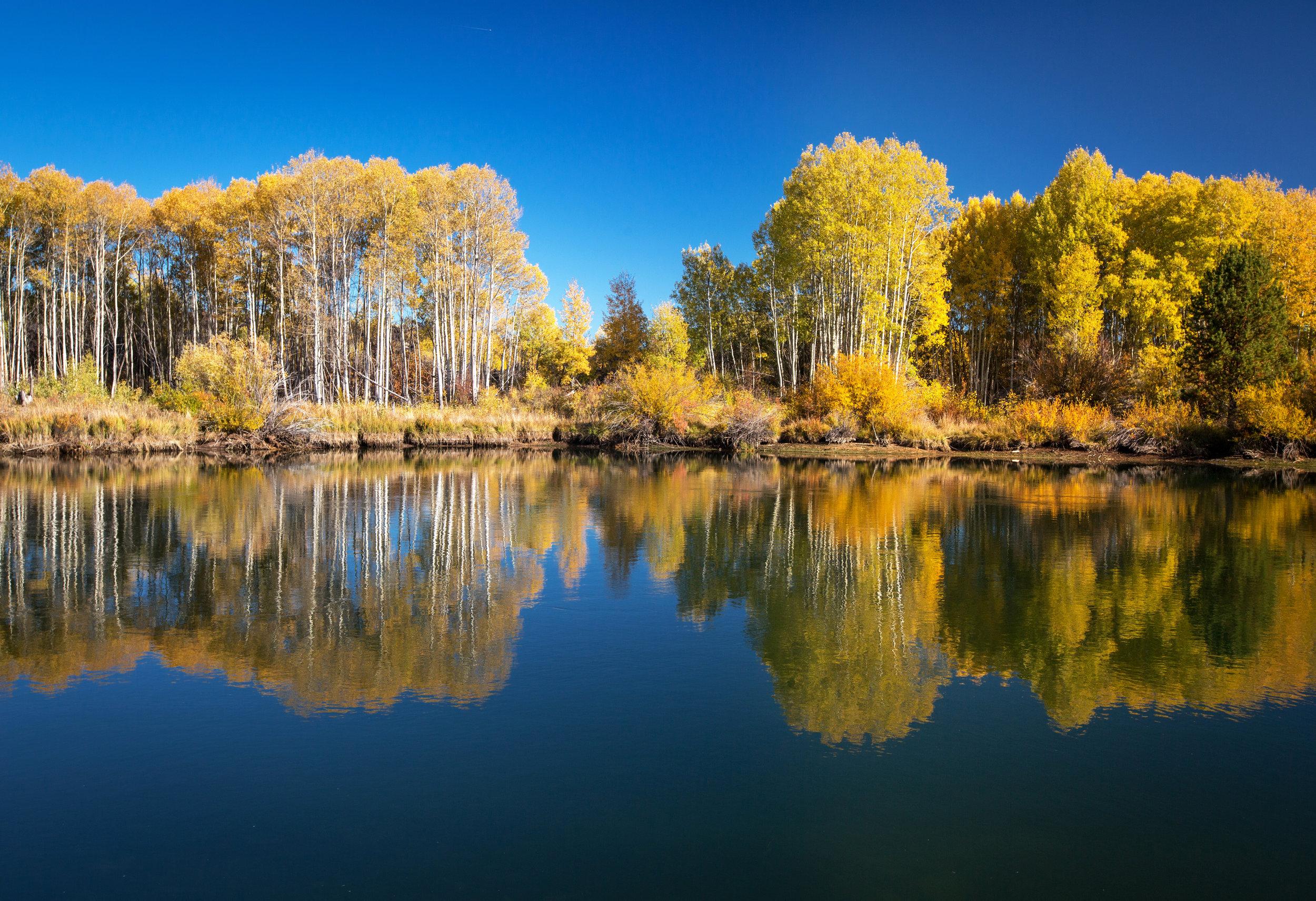 Deschutes River Bend Photo Tours