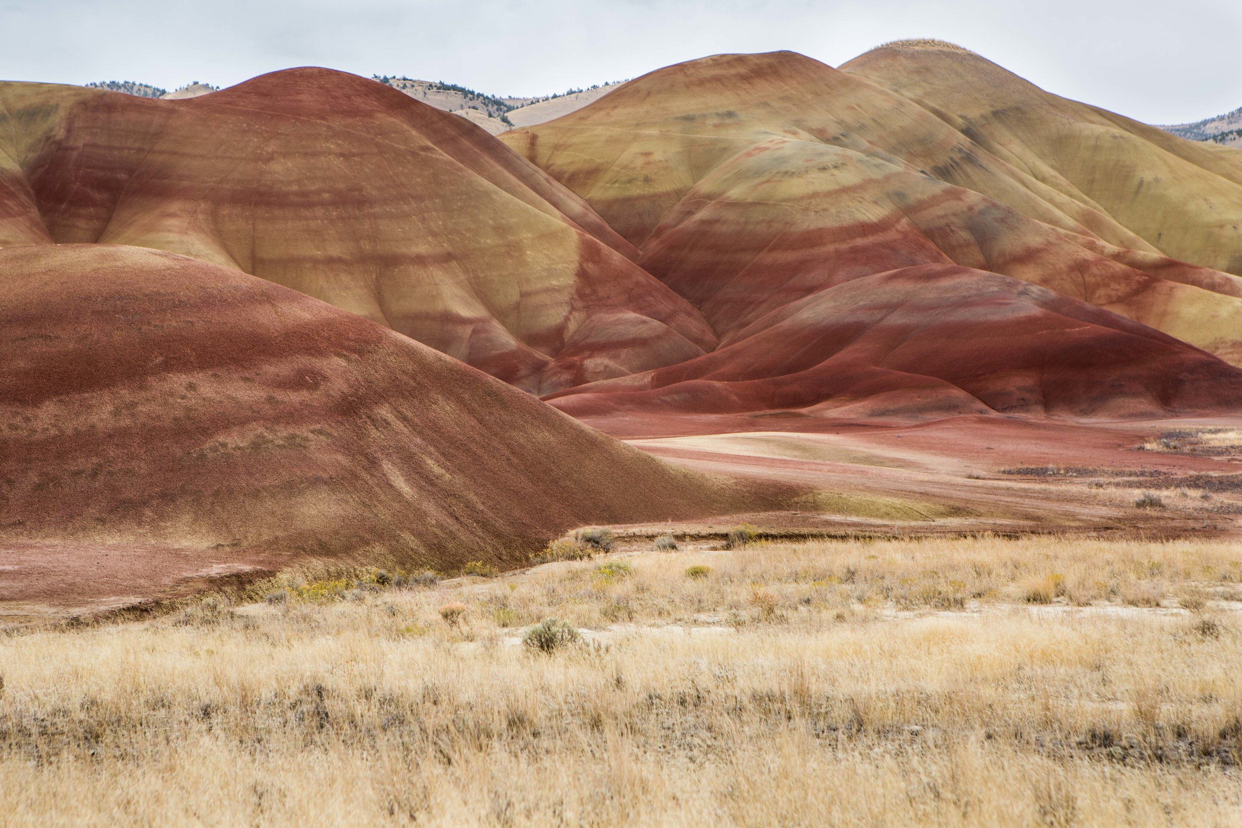 Painted Hills Bend Photo Tours