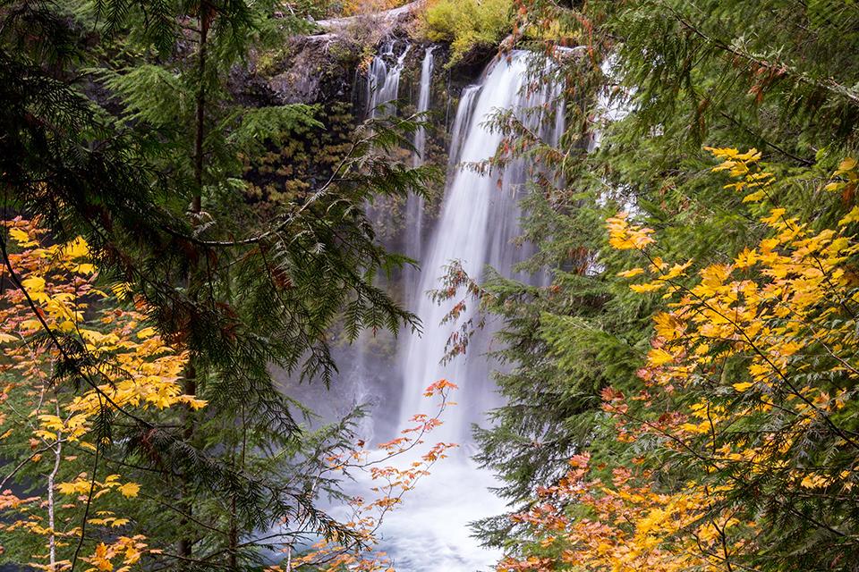 Bend Photo Tours Fall Foliage Workshop