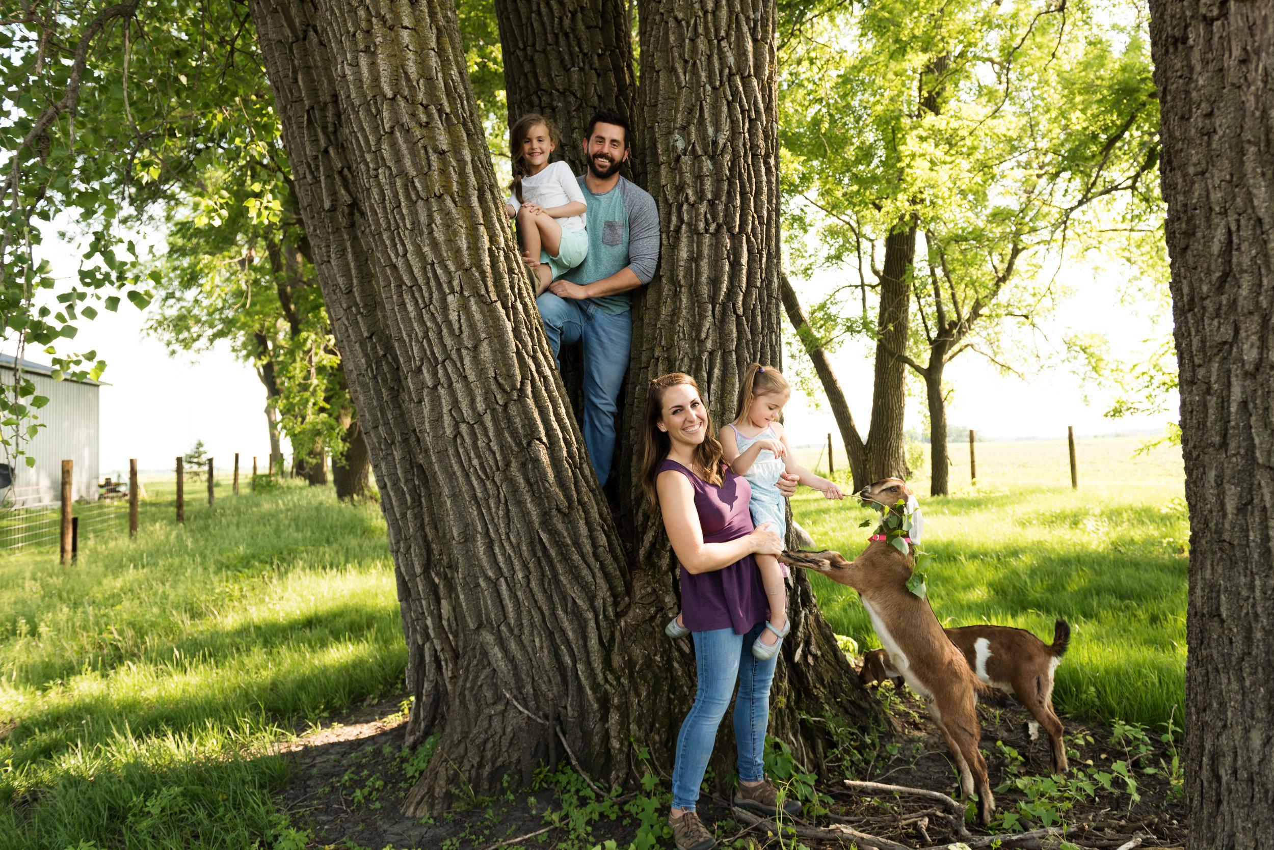 MEET THE FAMILY -