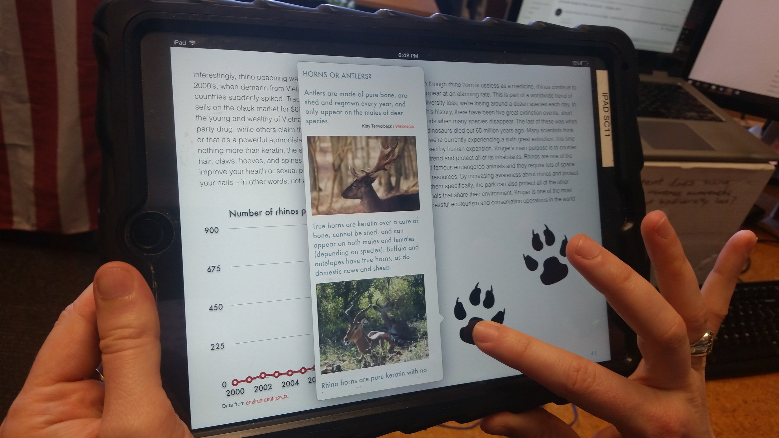 Tapping on a paw print reveals extra information and fun facts.