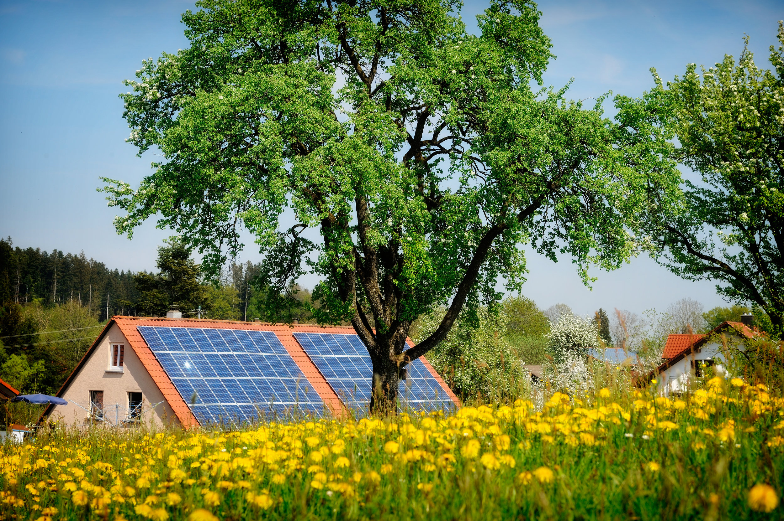 solar-panel-on-a-red-roof-304512014.jpg