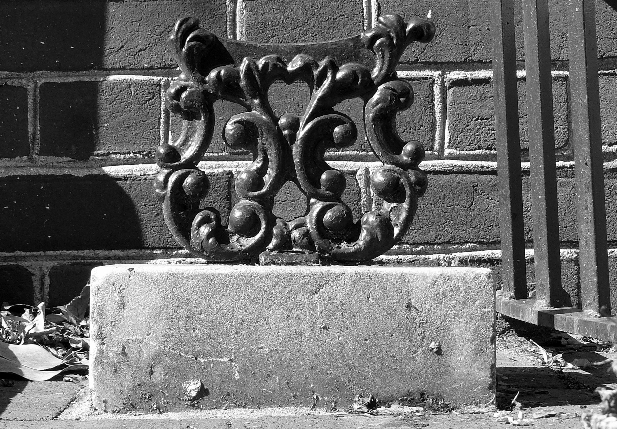 Ornamental abrade, Philadelphia