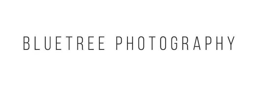 blue tree photagraphy .jpg