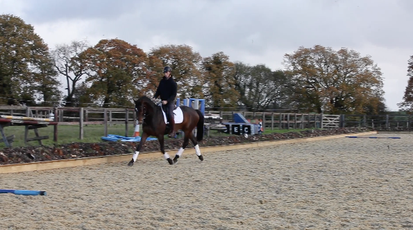 A enter at working trot without halting to X then trot X- H or X to M -