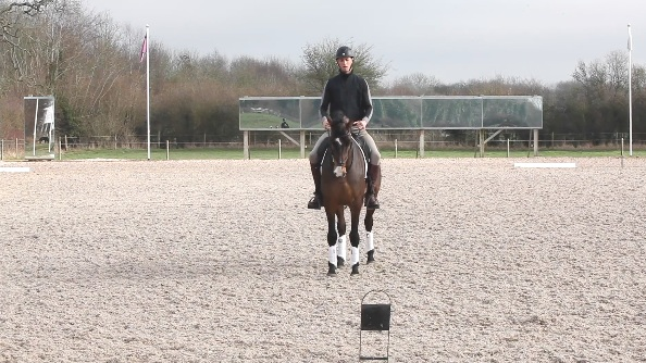 E half 10m circle to X, working trot to G, G halt and salute -