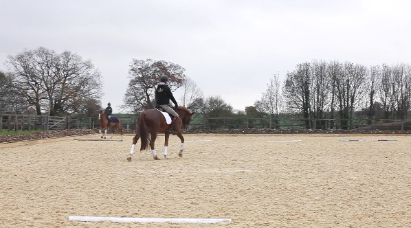 Free walk on a long rein across the diagonal -
