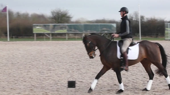 Working trot to A, A working canter onto a 15m circle, AK working canter, KH some medium canter strides, HCM working canter -