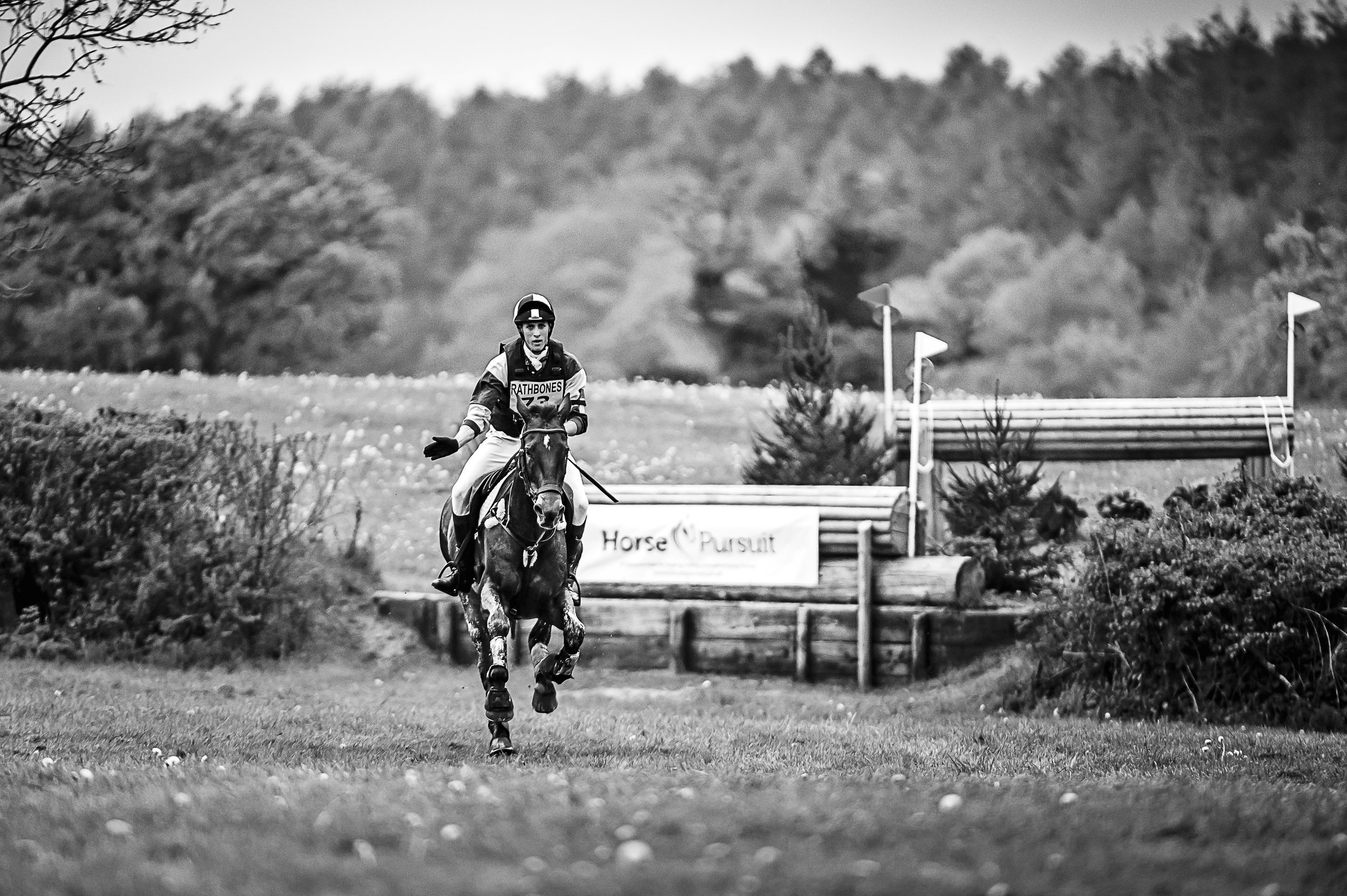10 WAYS TO KEEP YOUR HORSE CALM AT THE START BOX -