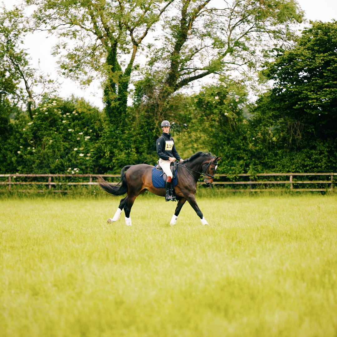 EXERCISES TO HELP STOP A HORSE RUSHING -