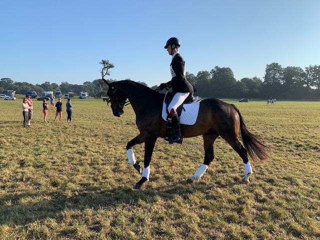 Ballycoog Breaker Boy warming up at Wellington horse trials