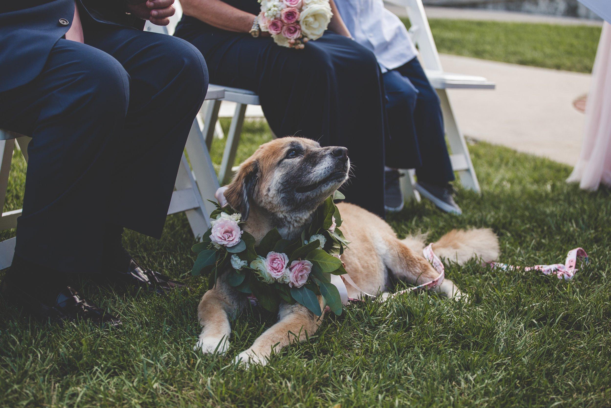 cider-gallery-lawrence-ks-wedding-photographer-jason-domingues-photography-lindsey-paul-0353.jpg