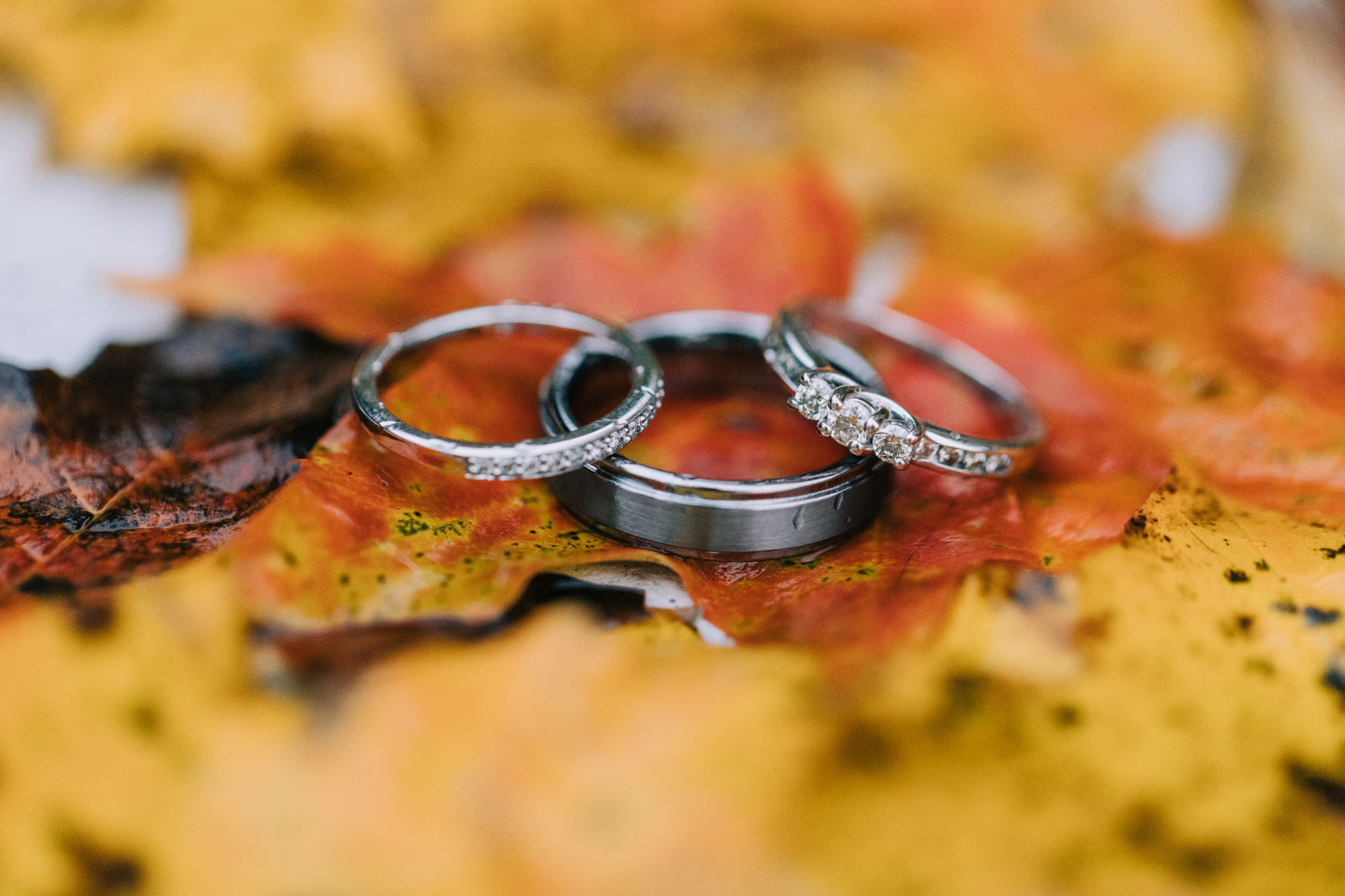 rolling-pines-berwick-pa-wedding-7236.jpg