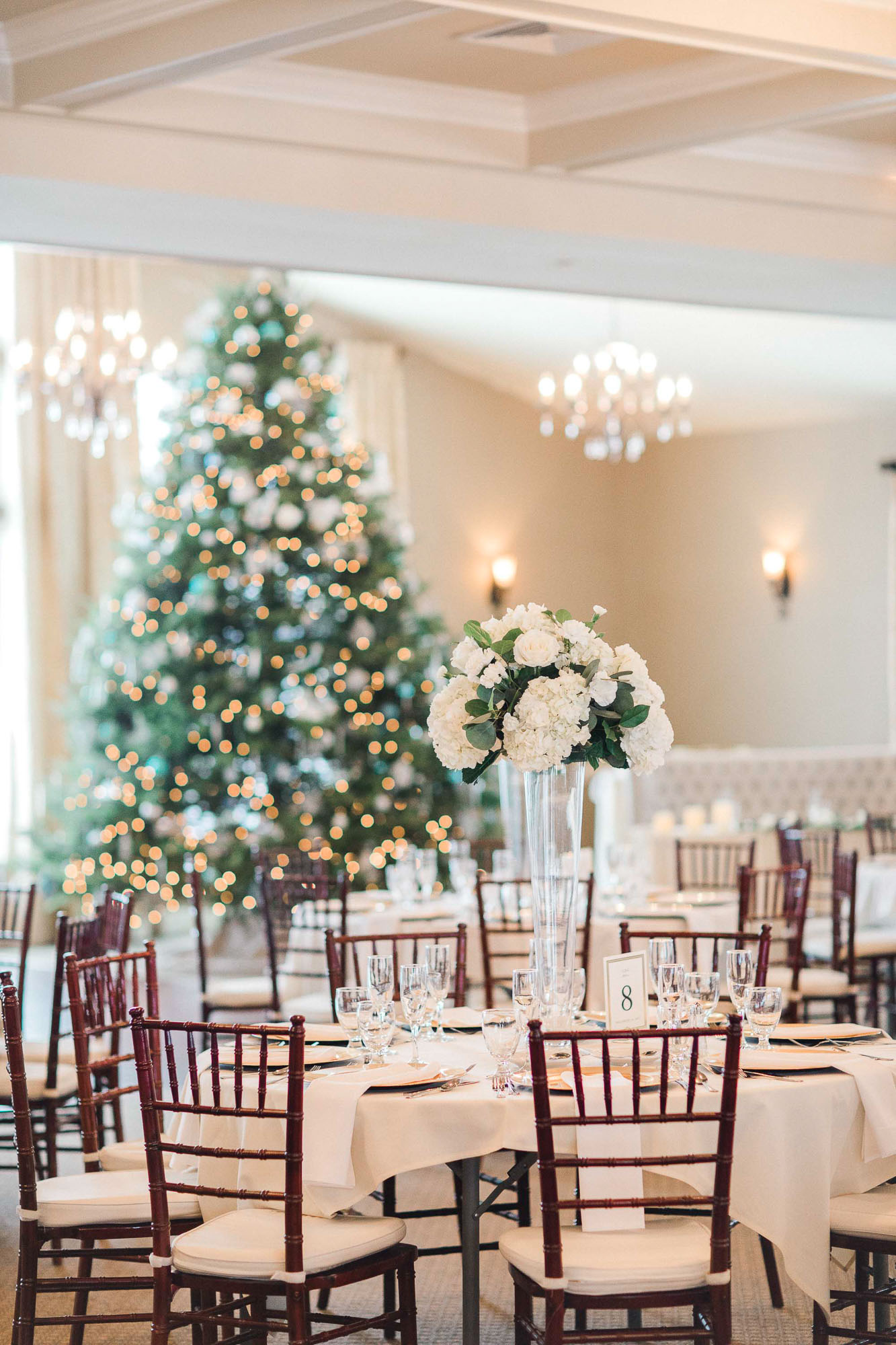 snowy-sand-springs-country-club-drums-pa-christmas-wedding-23986.jpg