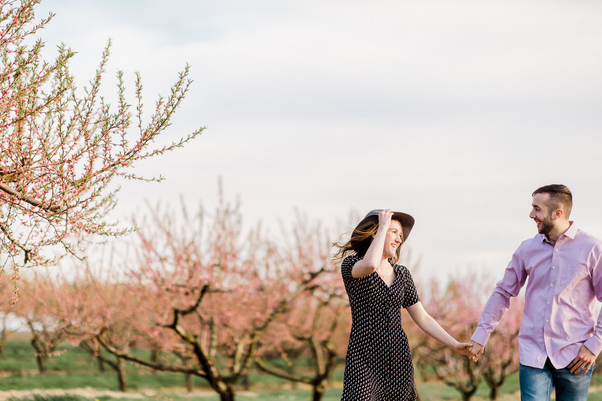 Rohrbachs-Spring-cherry-blossom-engagement-7432.jpg