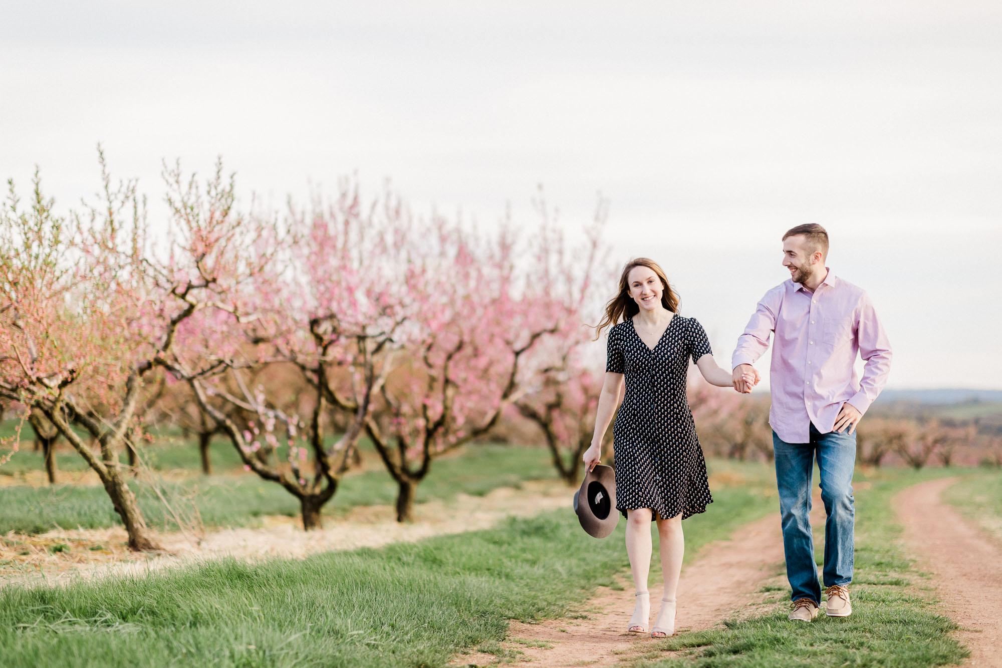 Rohrbachs-Spring-cherry-blossom-engagement-7456.jpg