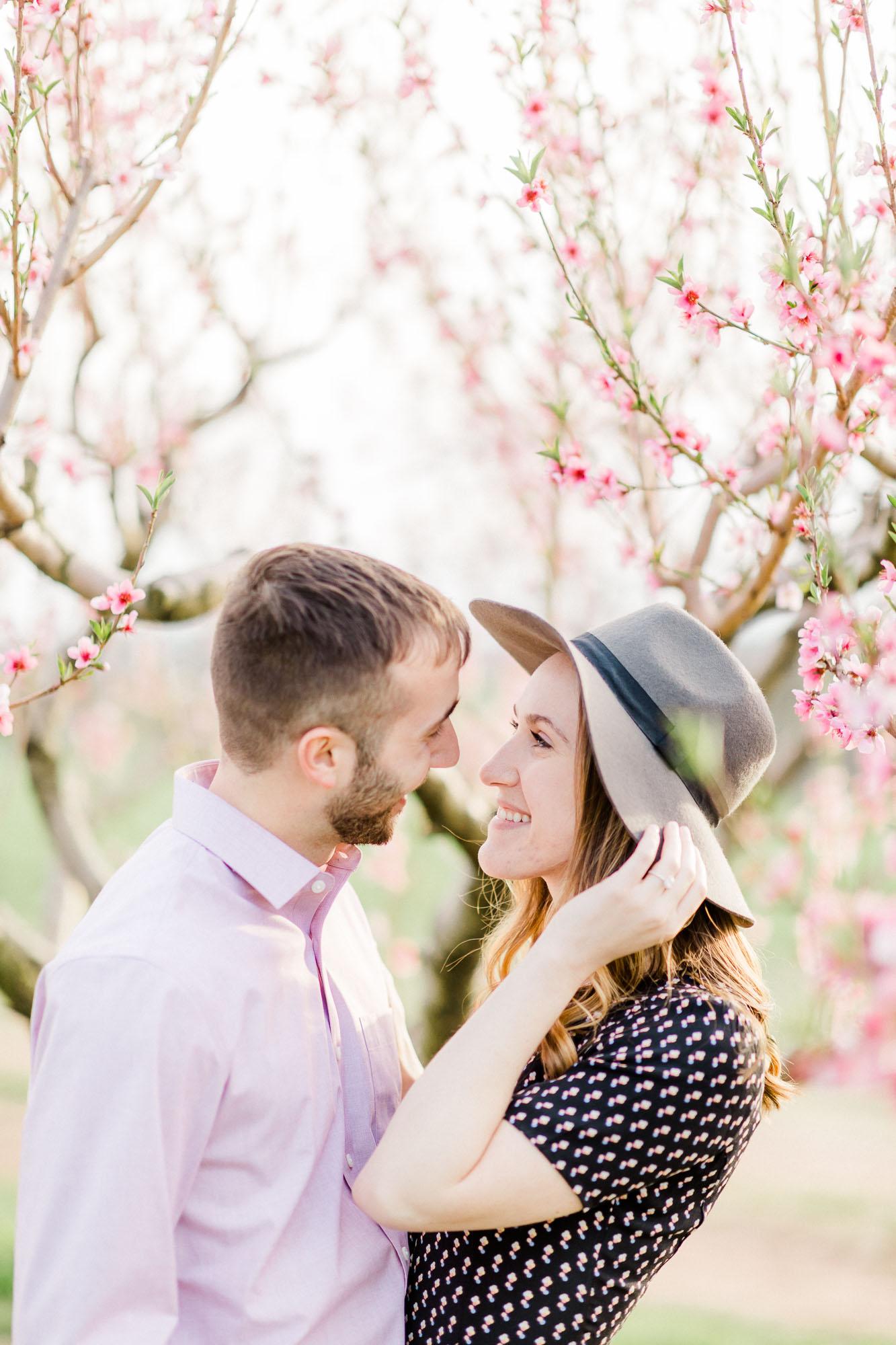 Rohrbachs-Spring-cherry-blossom-engagement-7492.jpg