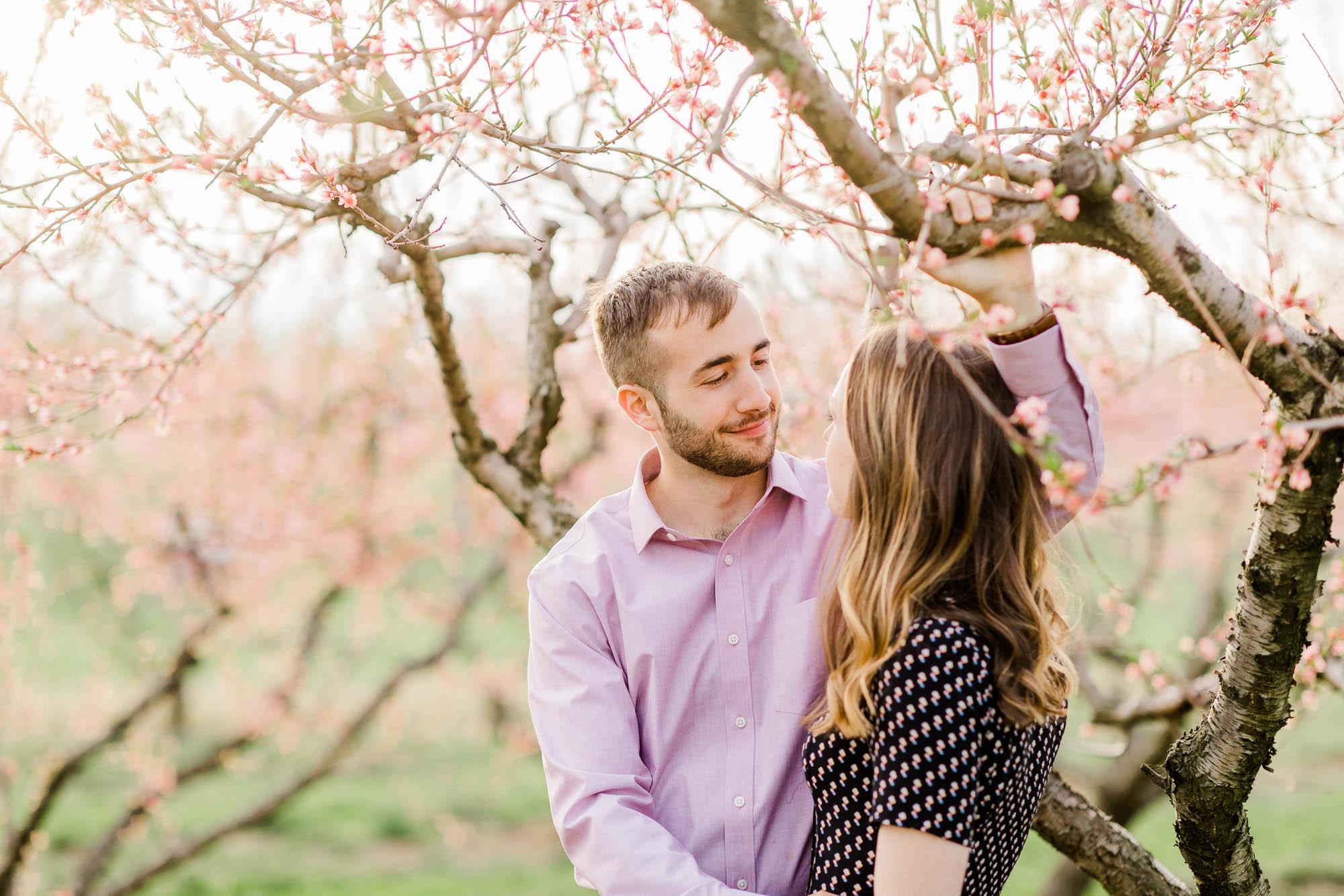Rohrbachs-Spring-cherry-blossom-engagement-7585.jpg