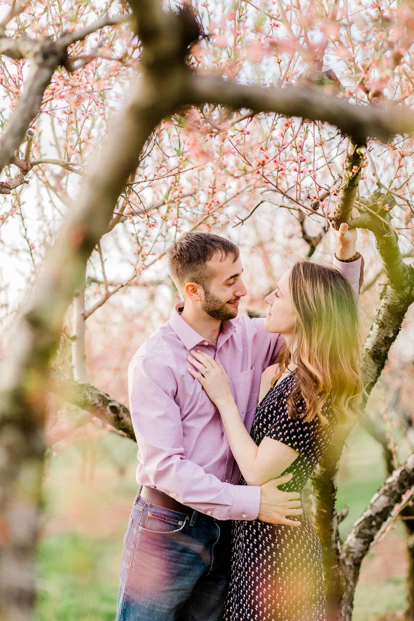 Rohrbachs-Spring-cherry-blossom-engagement-7614.jpg