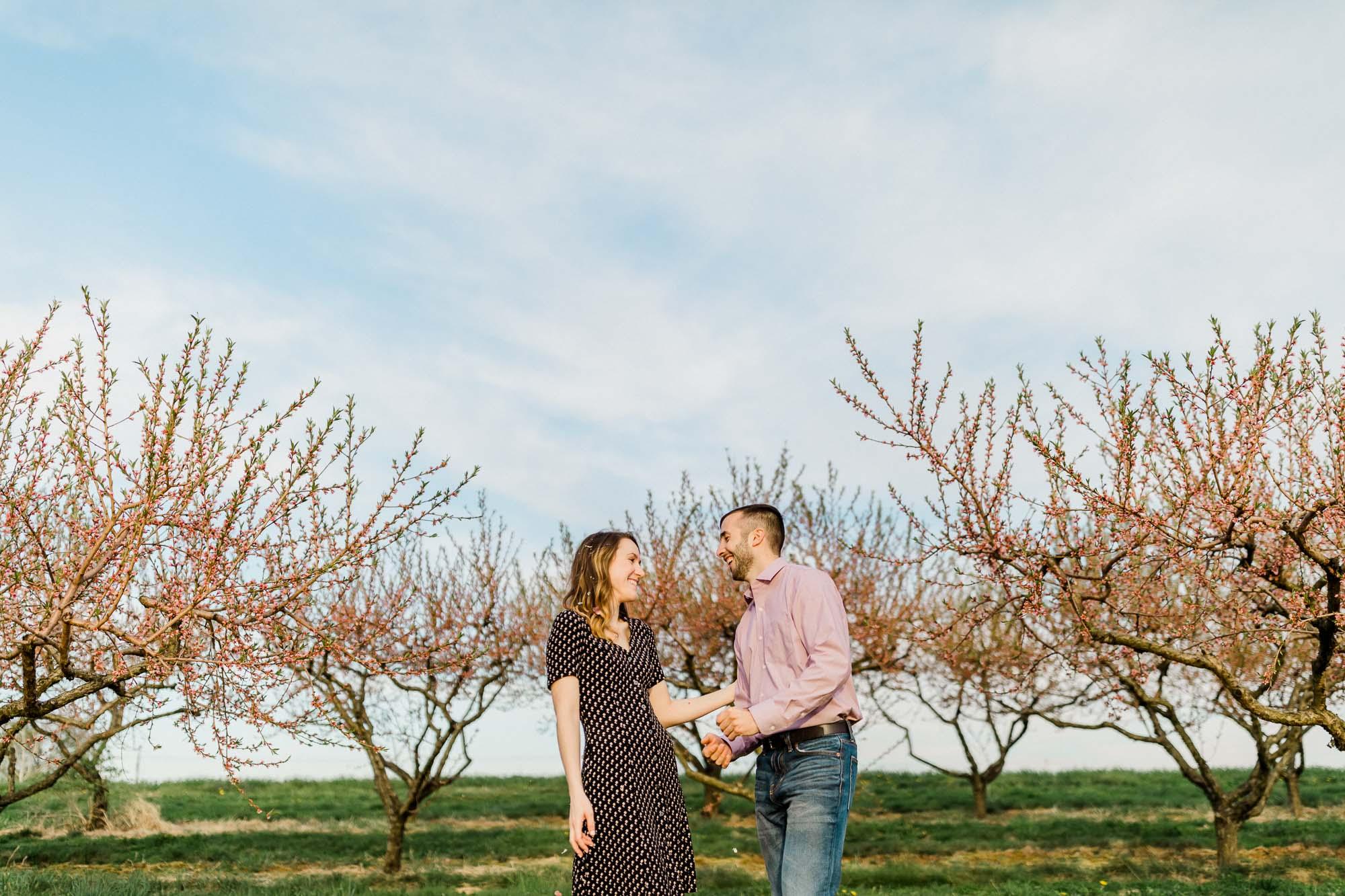 Rohrbachs-Spring-cherry-blossom-engagement-7628.jpg