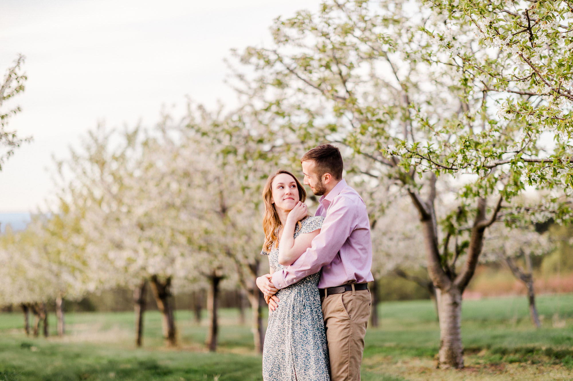 Rohrbachs-Spring-cherry-blossom-engagement-7705.jpg