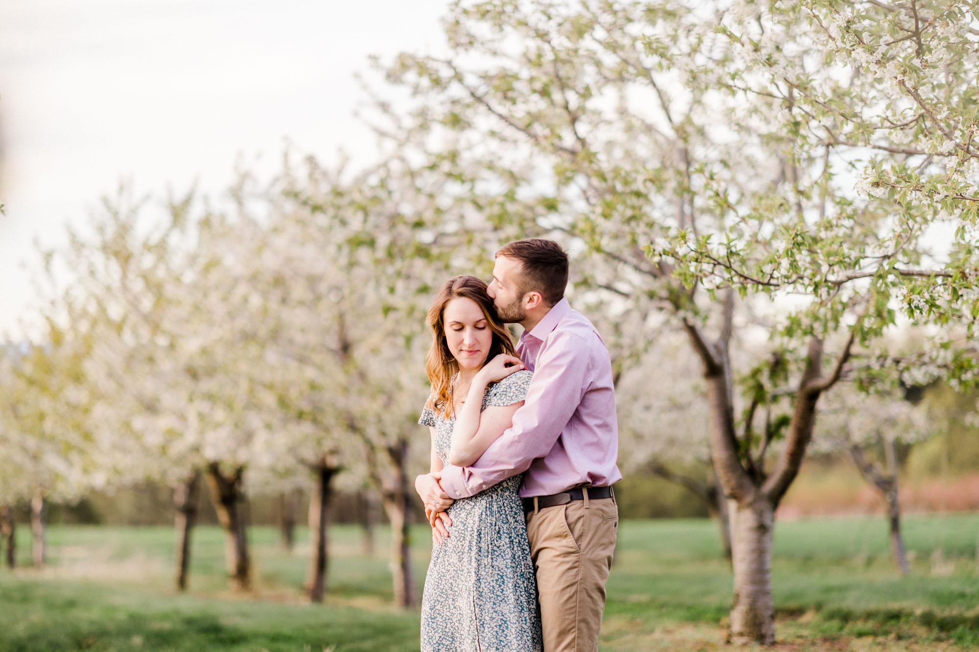 Rohrbachs-Spring-cherry-blossom-engagement-7714.jpg