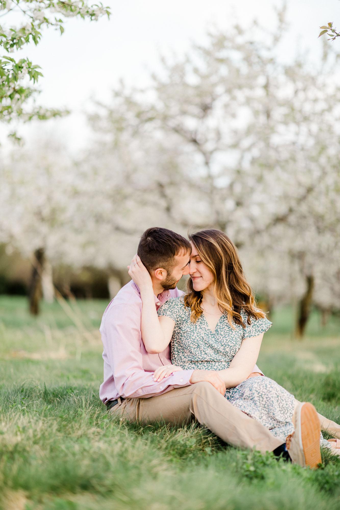 Rohrbachs-Spring-cherry-blossom-engagement-7756.jpg