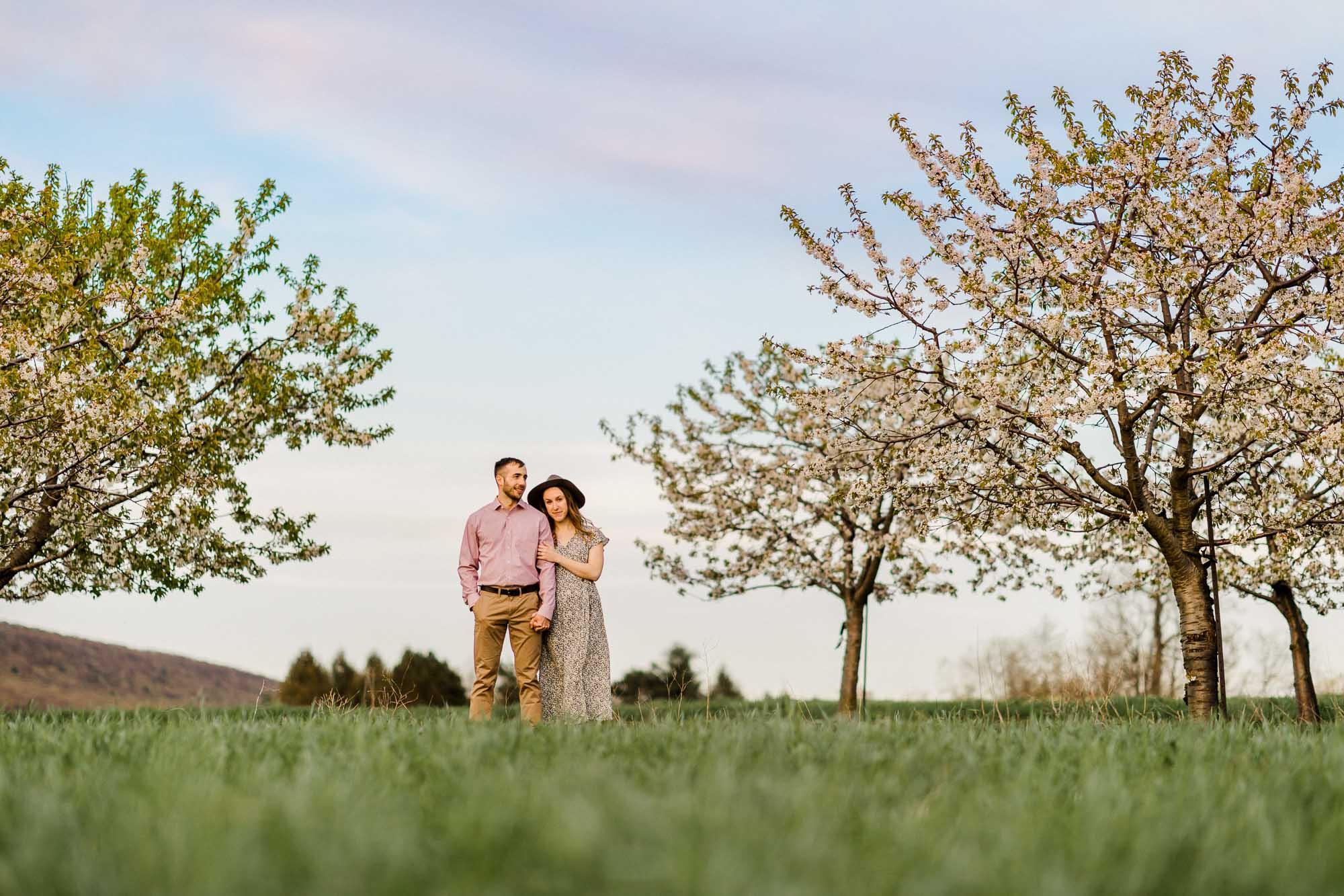 Rohrbachs-Spring-cherry-blossom-engagement-7790.jpg