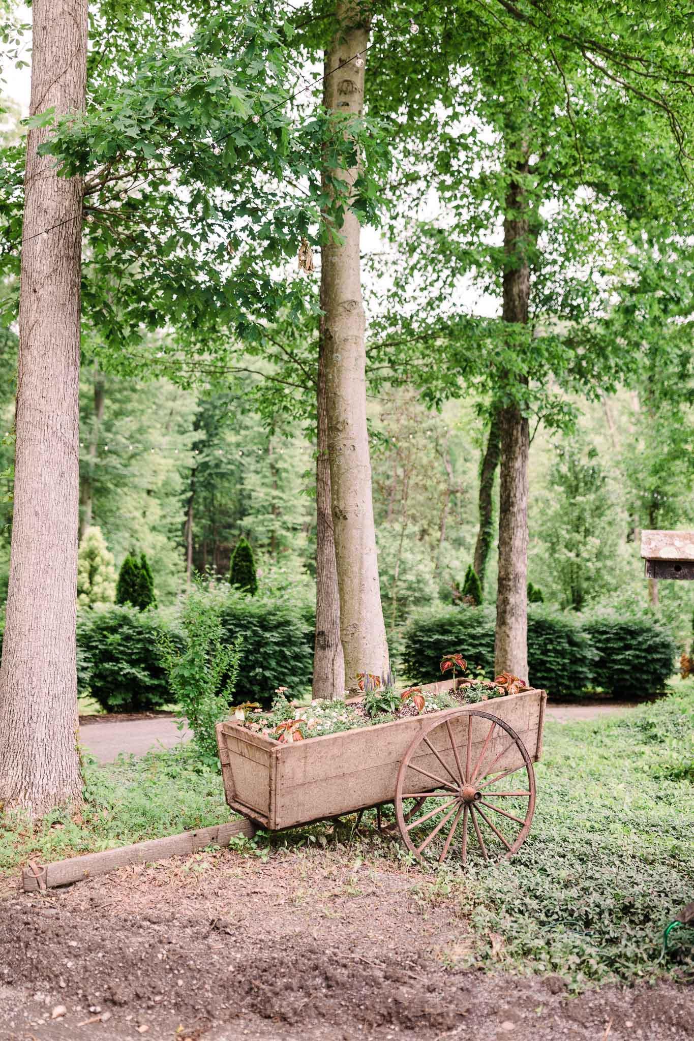 June-backyard-wedding-8717.jpg