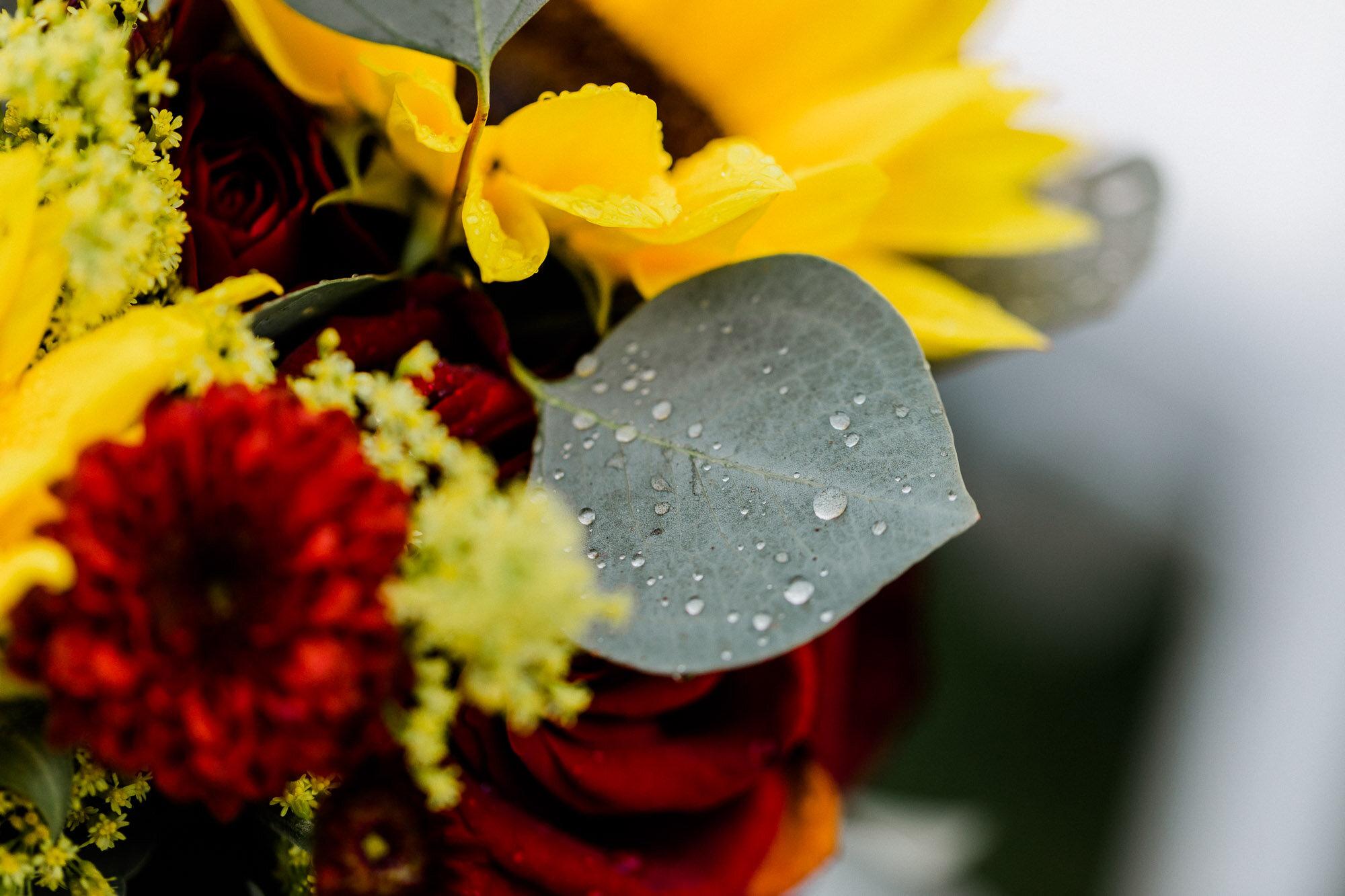 links-hemlock-creek-bloomsburg-wedding-5989.jpg