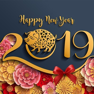 Happiest new year! We wish you a year of prosperity, good fortune, good health, wealth, and lots of banh mi!!! . . . . . . . . . #chinese new year #vietnamesefood #vietnamesenewyear #chucmungnammoi #happy #wealth #health #urbanhcafe #foodie #banhmi