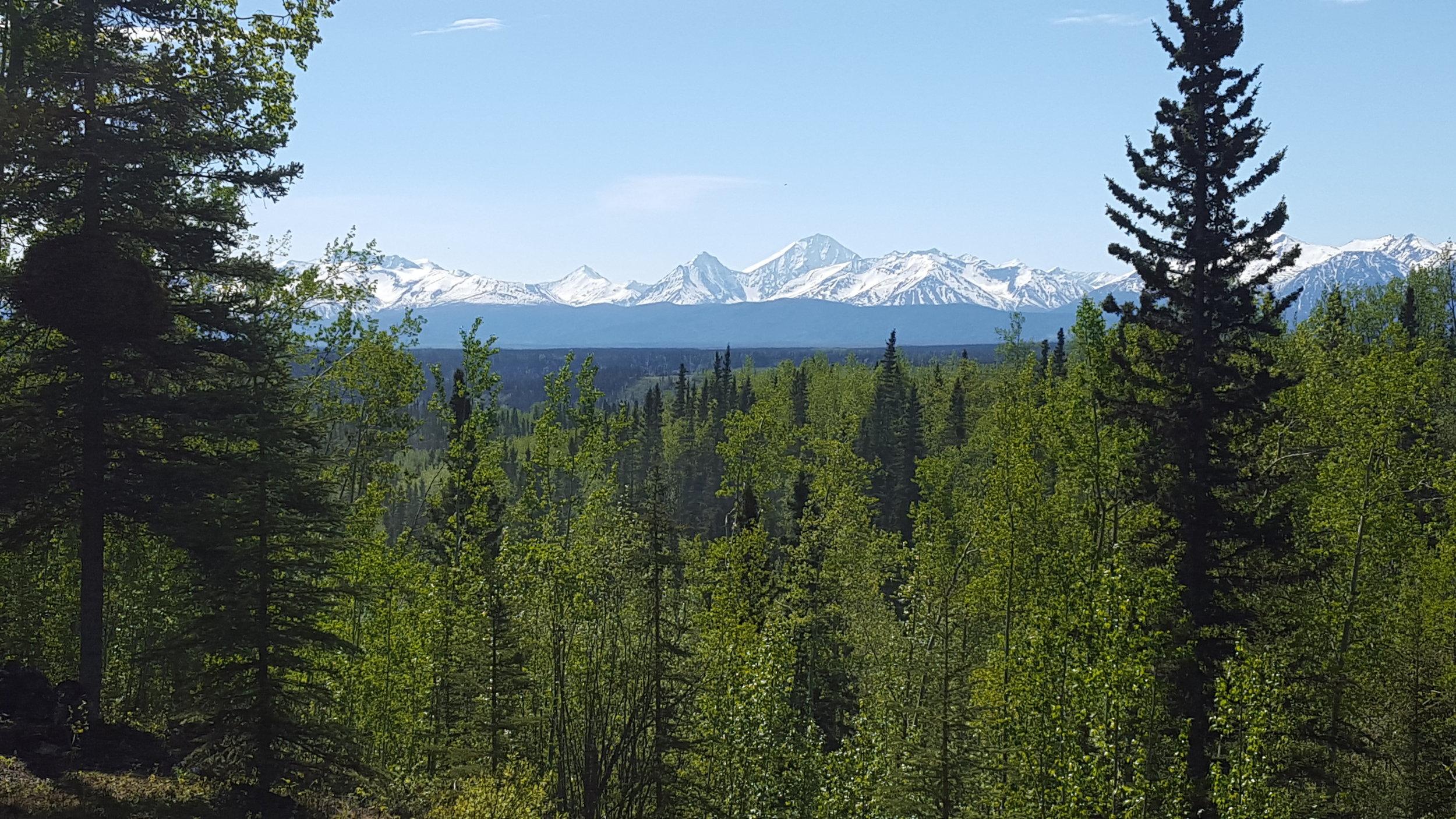 Swift Creek Cabins view
