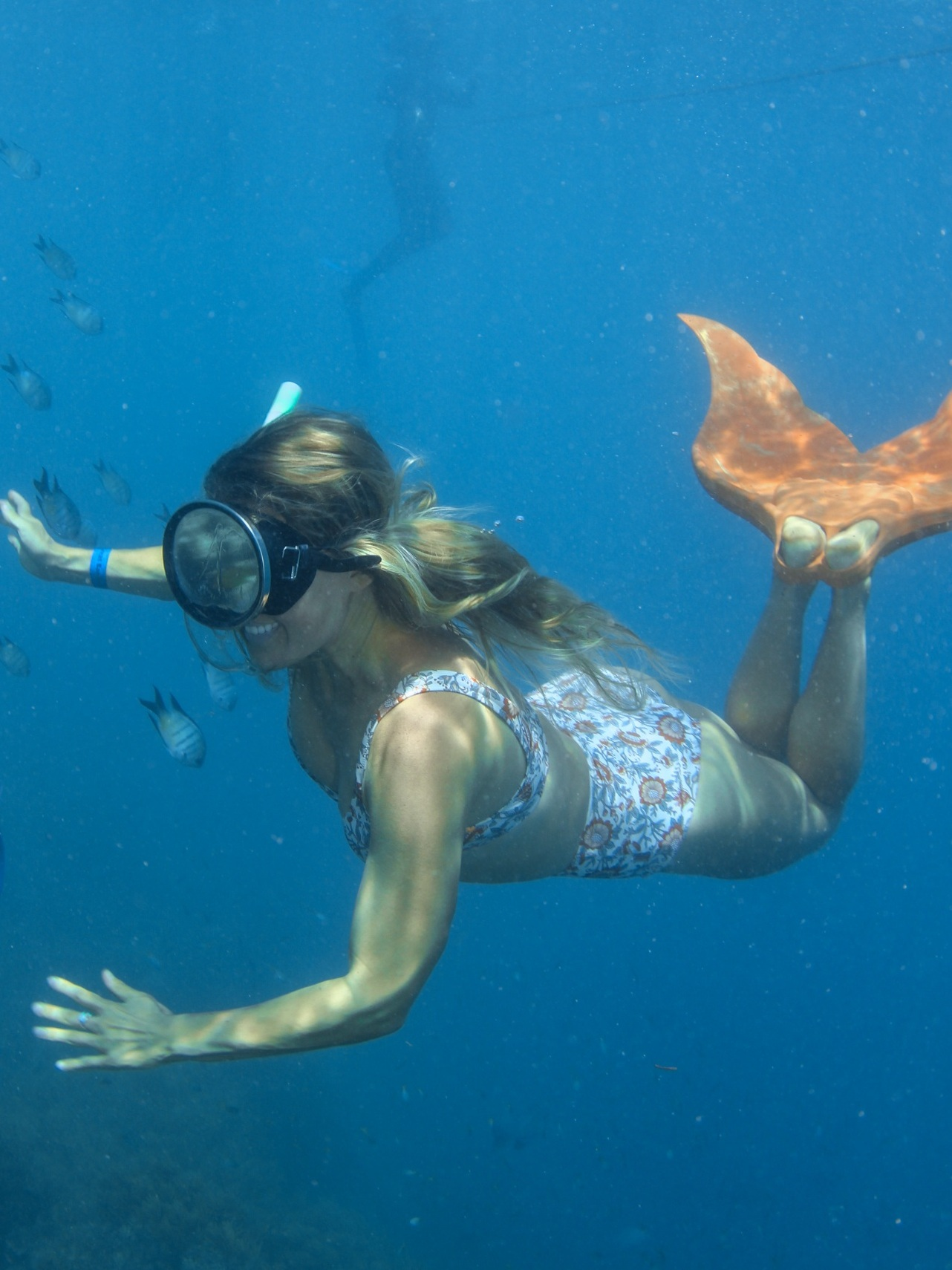 Kate Nelson (Plastic Free Mermaid) - On why she quit plastic and how you can too