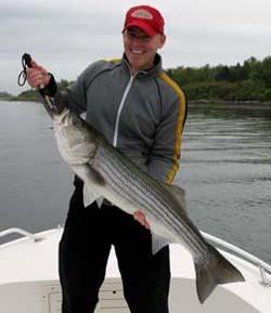 Narragansett Bay Striped Bass