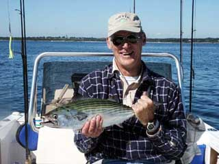 Green Bonita Caught fishing on Narragansett Bay