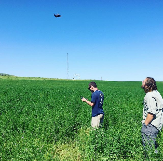 It's drone time! Field techs Matt and Sam send a drone up to take aerial imagery of the sampling site so that we can characterize vegetation cover and better understand relationships between veg and soil carbon.