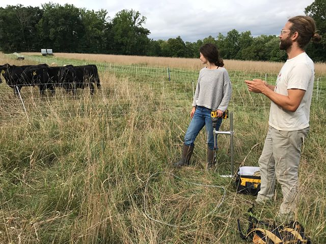 Some field work a little closer to home with @stonebarns. Their grazing team is using Quick Carbon to generate a baseline map of soil carbon across their property where they are introducing a new suite of regenerative multi-species grazing practices. Really interesting to see how quickly landscapes respond to management in the Hudson Valley of New York relative to the drylands of Montana!