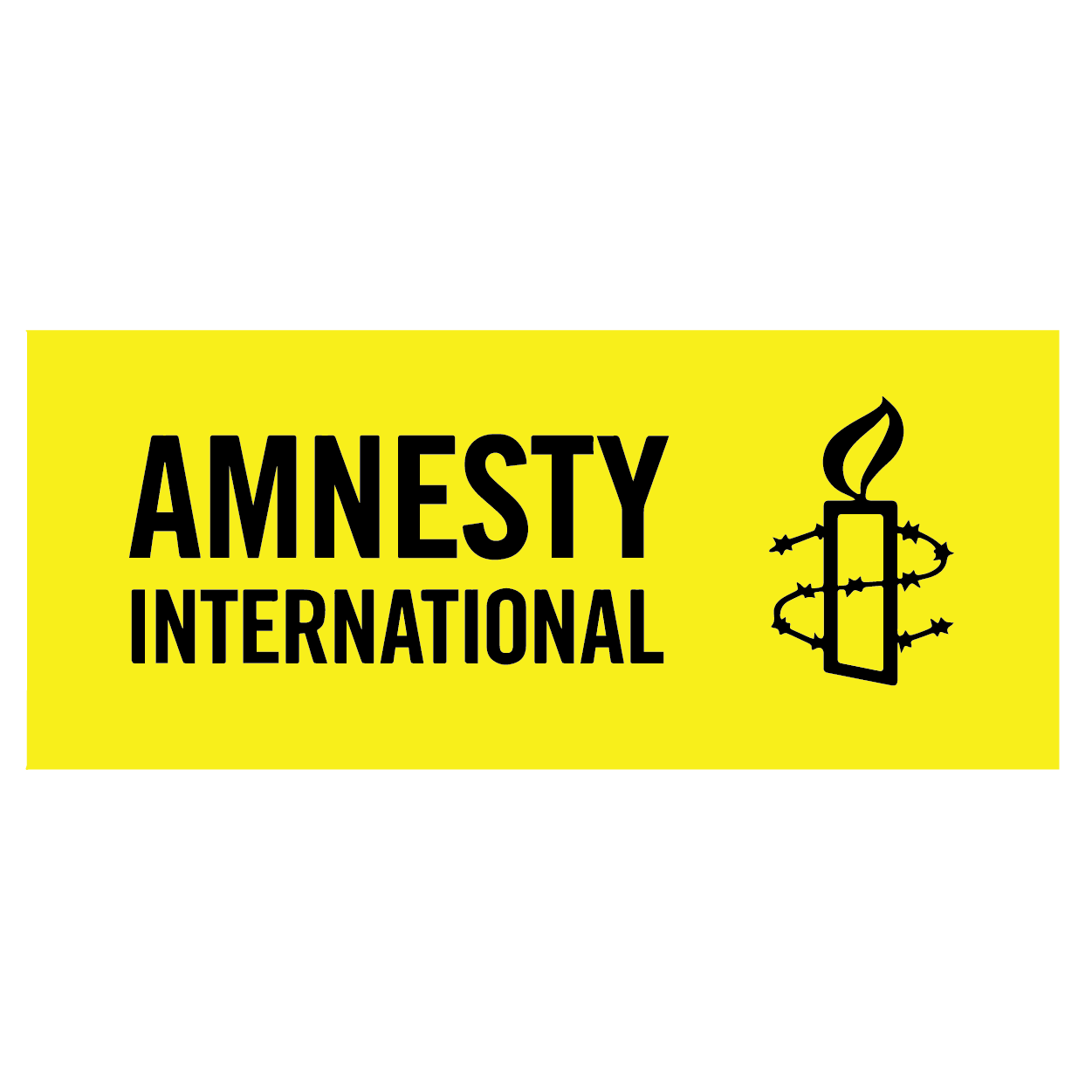 NA_Partners_Logos_Amnesty International.png