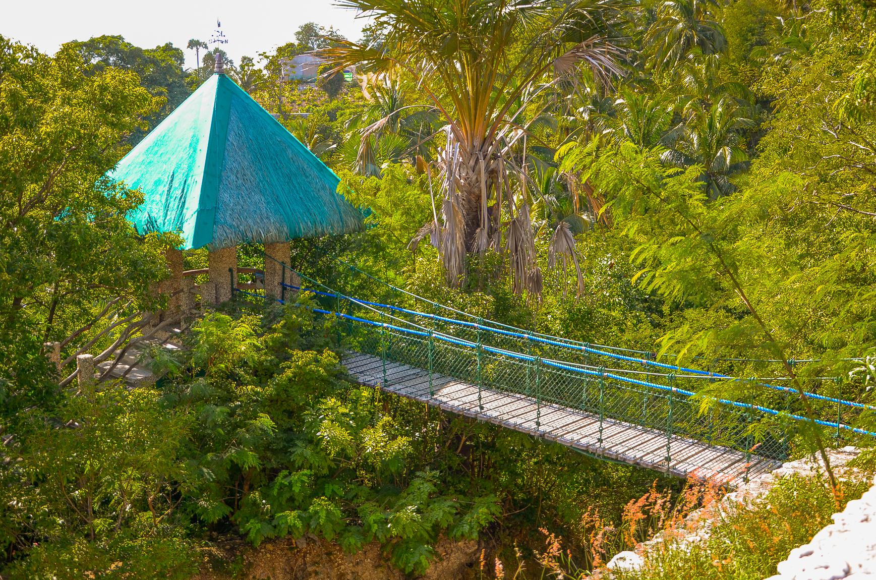 Hanging Bridge-1.jpg