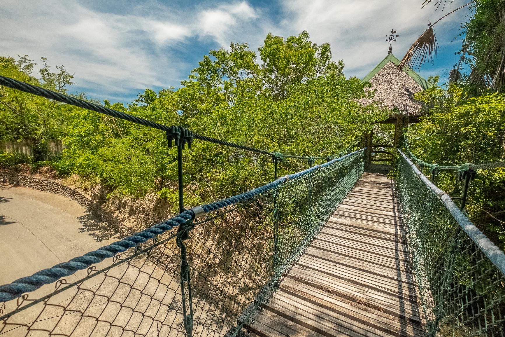 Hanging Bridge-3.jpg