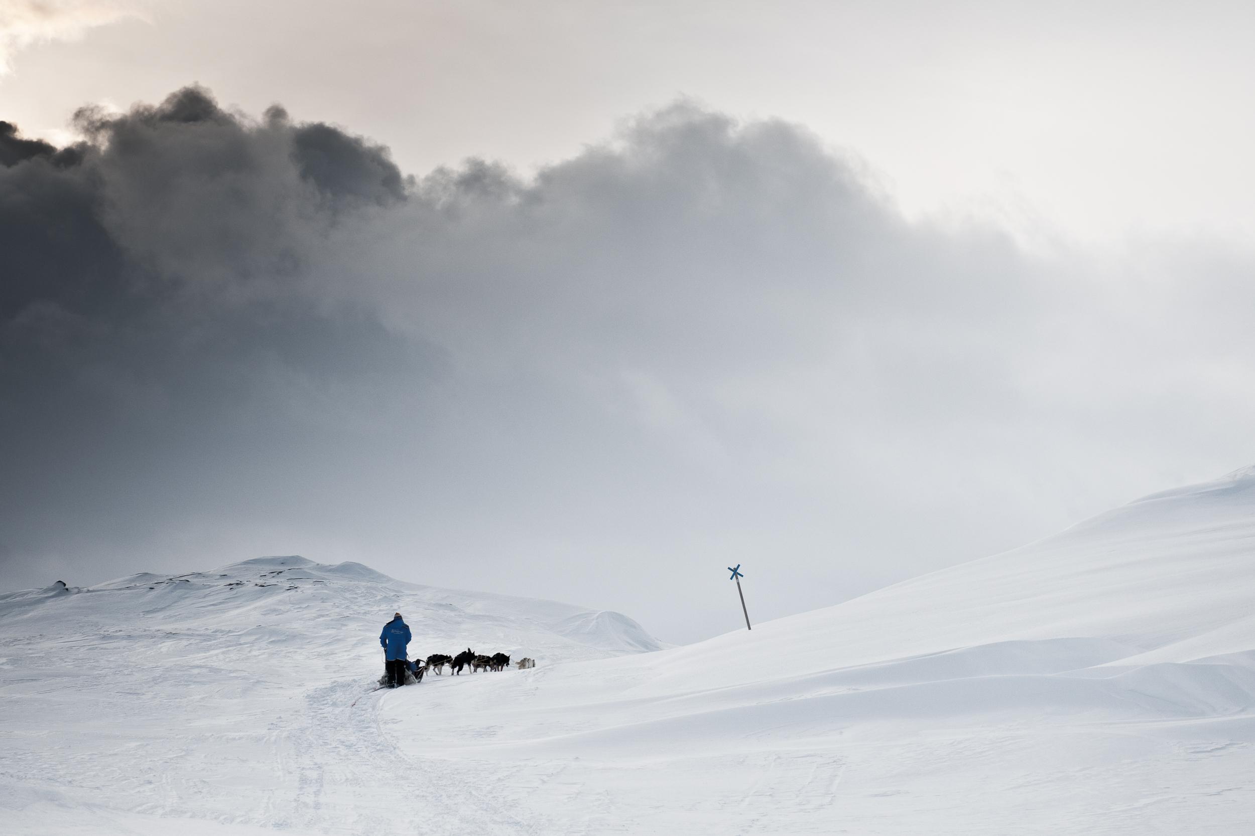 www.iaincrockart.com_arctic_dog_sled.jpg