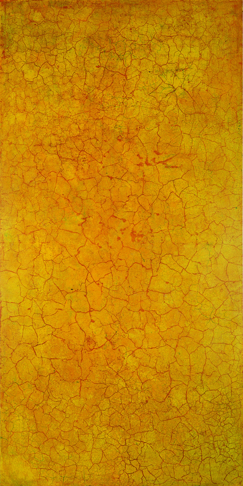 Krakelering # 1 . 1995. Lacquer, oil and pigment on birch plywood. 280 x 140 cm.