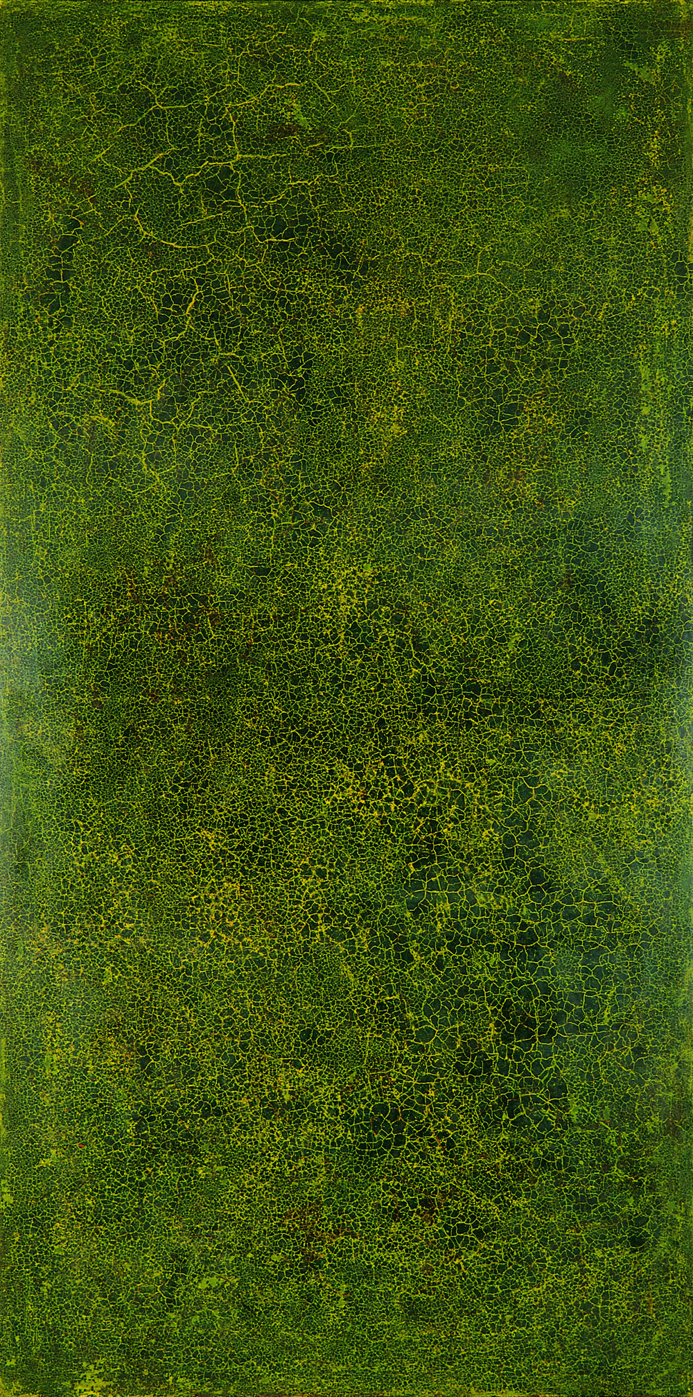 Krakelering # 2 . 1995. Lacquer, oil and pigment on birch plywood. 280 x 140 cm.